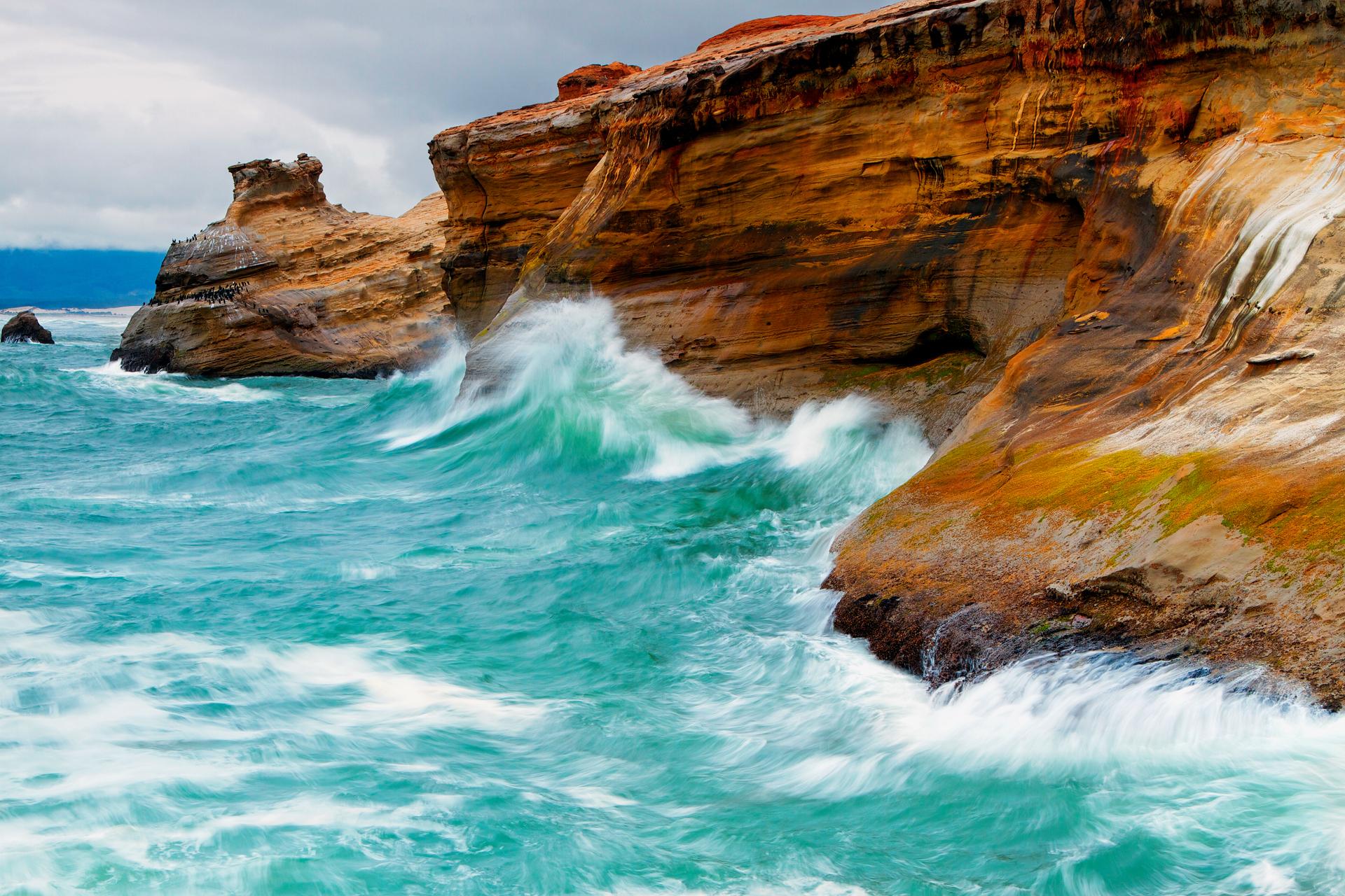 Earth - Wave  Sea Rock Bird Ocean Wallpaper