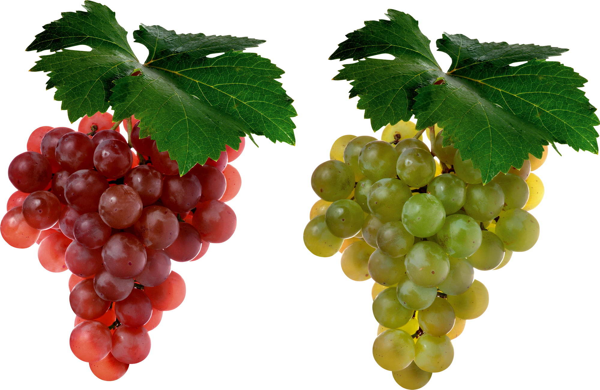 Grapes Full HD Wallpaper and Background Image | 2000x1300 | ID:249487 for Grapes Animated  173lyp