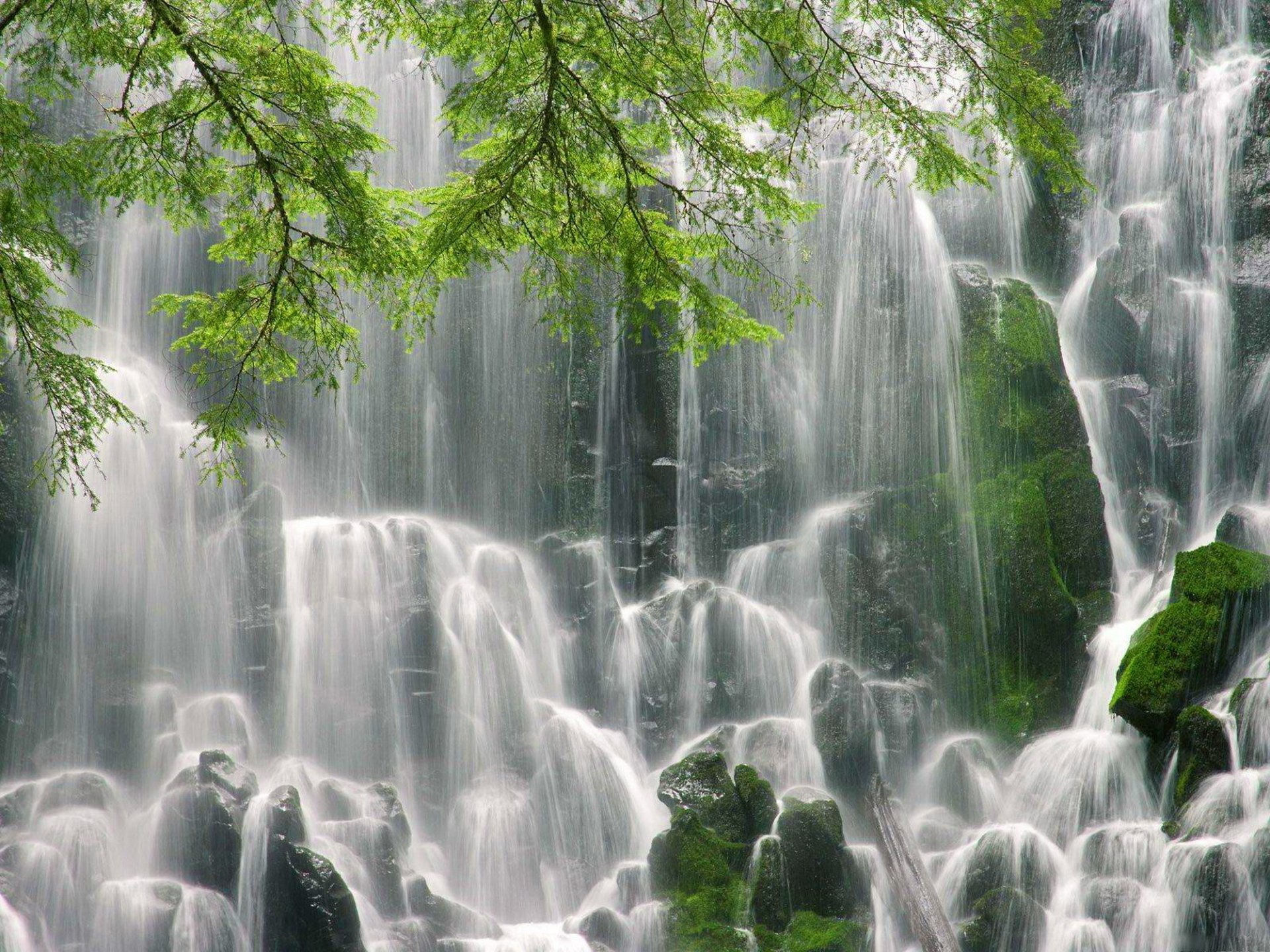Earth - Waterfall  Wallpaper