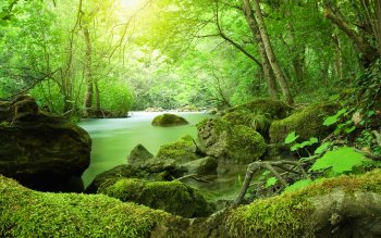 Earth - Stream Wallpapers and Backgrounds ID : 249829
