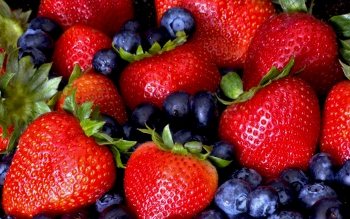 Food - Berry Wallpapers and Backgrounds ID : 252985