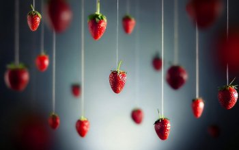 Alimento - Strawberry Wallpapers and Backgrounds ID : 253905