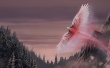 Fantasy - Phoenix Wallpapers and Backgrounds ID : 260729