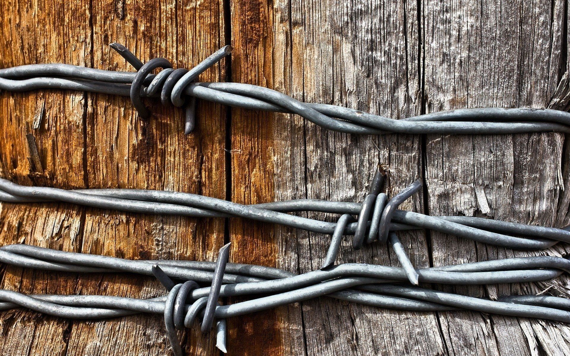 Barbed Wire Wallpaper barbed wire 4k ultra hd wallpaper and background | 4000x3000 | id