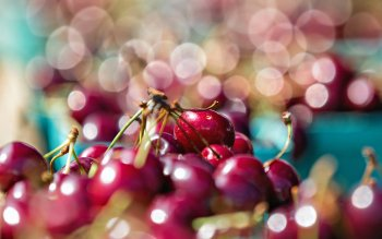 Food - Cherry Wallpapers and Backgrounds ID : 261415