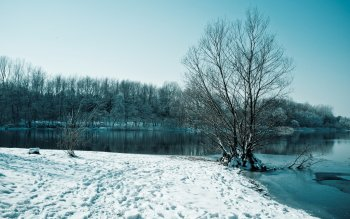 Земля - Winter Wallpapers and Backgrounds ID : 261469