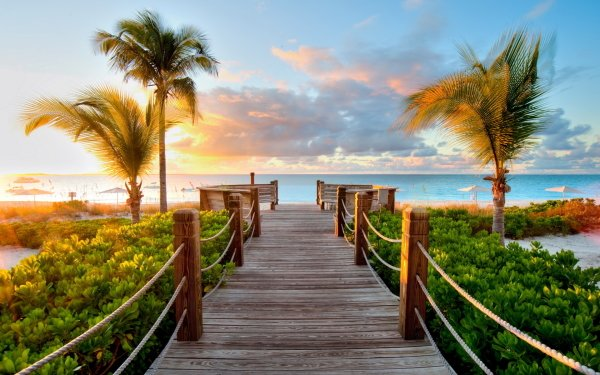 Photography Tropical Boardwalk HD Wallpaper | Background Image