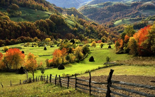 Photography Fall Landscape Foliage Tree Fence Field HD Wallpaper | Background Image