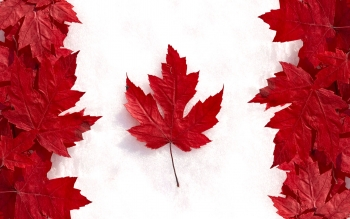 Diversen - Flag Of Canada Wallpapers and Backgrounds ID : 263865