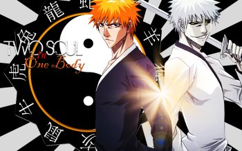 Anime - Bleach Wallpapers and Backgrounds ID : 265547