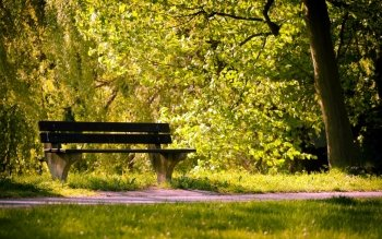 Man Made - Bench Wallpapers and Backgrounds ID : 267159