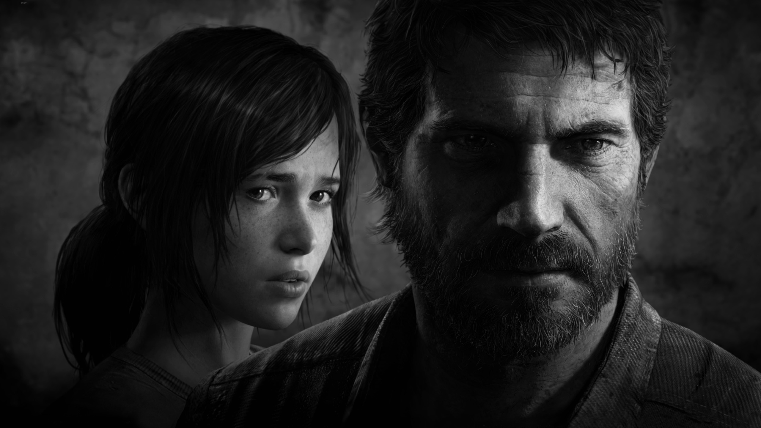 The last of us hd wallpaper background image 2560x1440 id 271595 wallpaper abyss - The last of us wallpaper ...