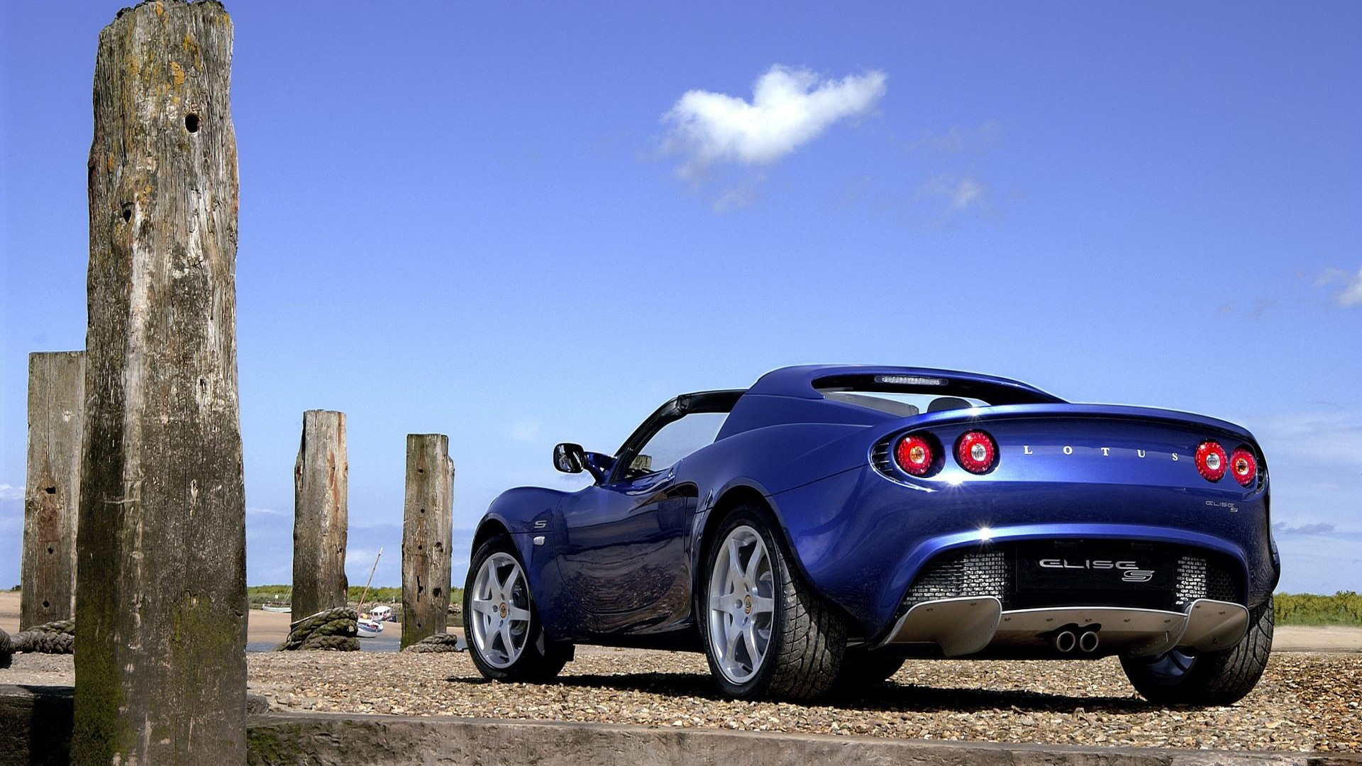 lotus full hd wallpaper and background image 1920x1080