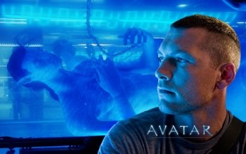 Movie - Avatar Wallpapers and Backgrounds ID : 274177