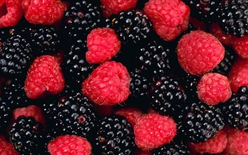 Food - Berry Wallpapers and Backgrounds ID : 276345