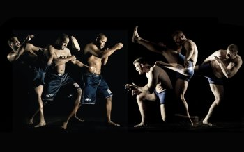 Sports - MMA Wallpapers and Backgrounds ID : 276487