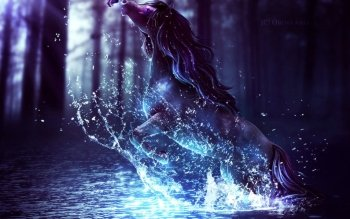 Fantasy - Djur Wallpapers and Backgrounds ID : 279309
