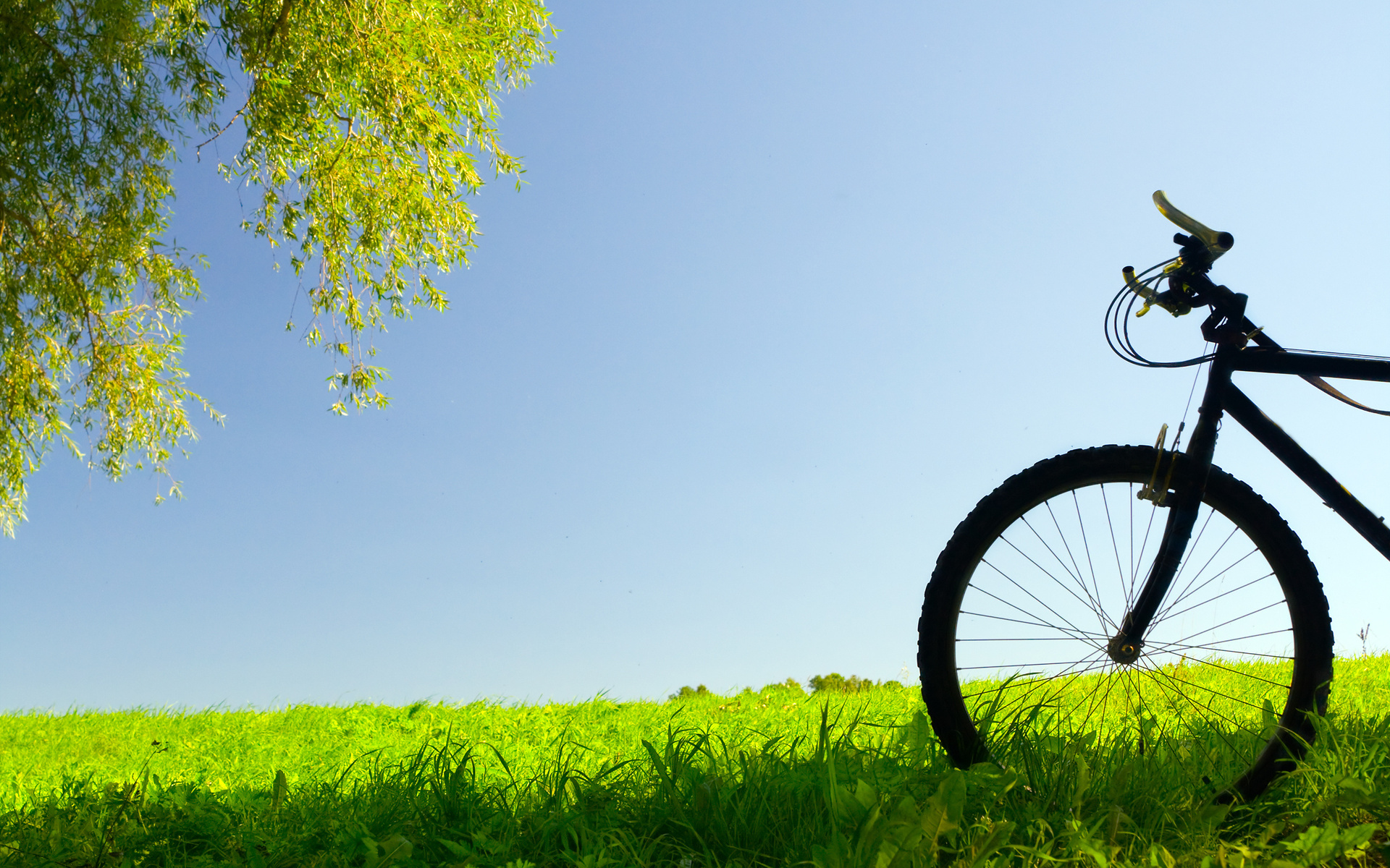 Bicycle Full HD Wallpaper and Background 1920x1200 ID280639