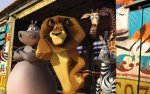 Preview Madagascar