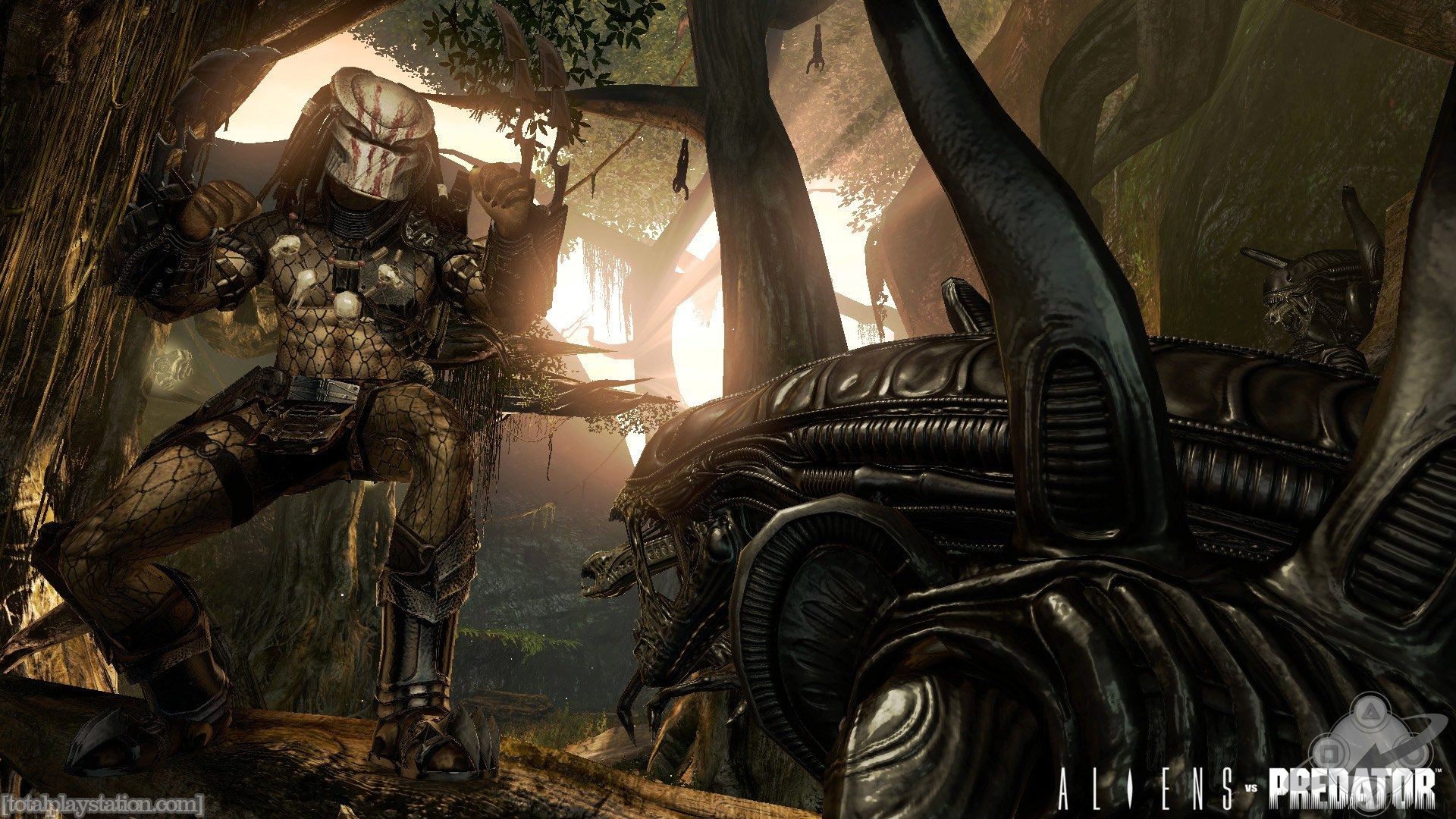 30 Aliens Vs Predator HD Wallpapers
