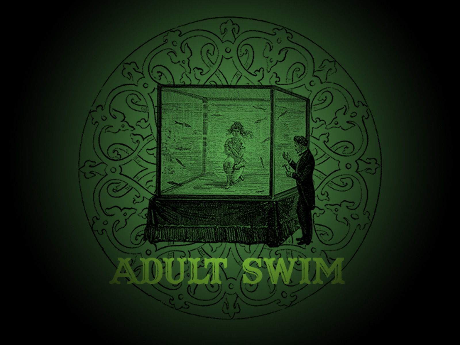 Adult swim wallpaper