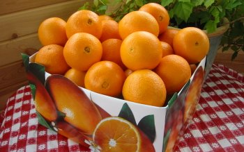 Food - Orange Wallpapers and Backgrounds ID : 40595