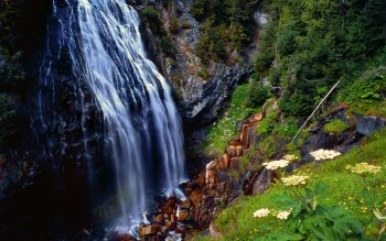 Earth - Narada Falls Wallpapers and Backgrounds ID : 43049