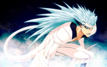 Anime - Bleach Wallpapers and Backgrounds ID : 47449