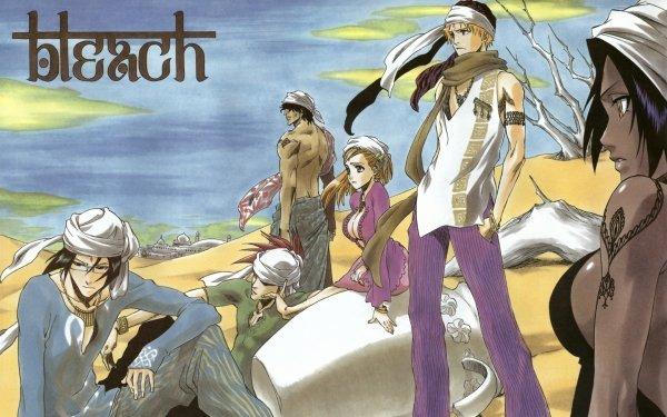 Anime Bleach Ichigo Kurosaki Orihime Inoue Uryu Ishida Yasutora Sado Yoruichi Shihôin HD Wallpaper | Background Image