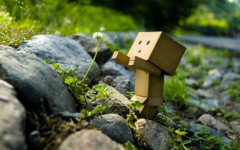 Diversen - Danbo Wallpapers and Backgrounds ID : 52277
