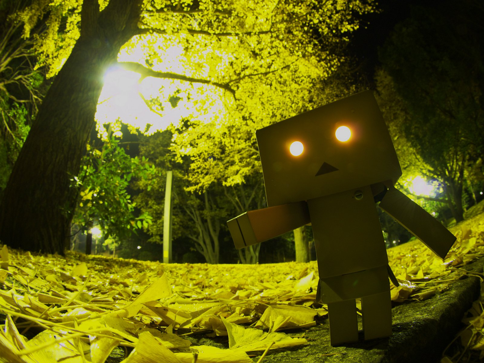 Diversen - Danbo  Wallpaper