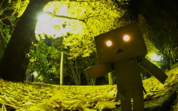 Diversen - Danbo Wallpapers and Backgrounds ID : 54787