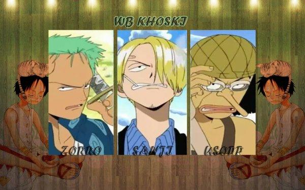 Anime One Piece Monkey D. Luffy Zorro Sanji Usopp Pirate HD Wallpaper | Background Image