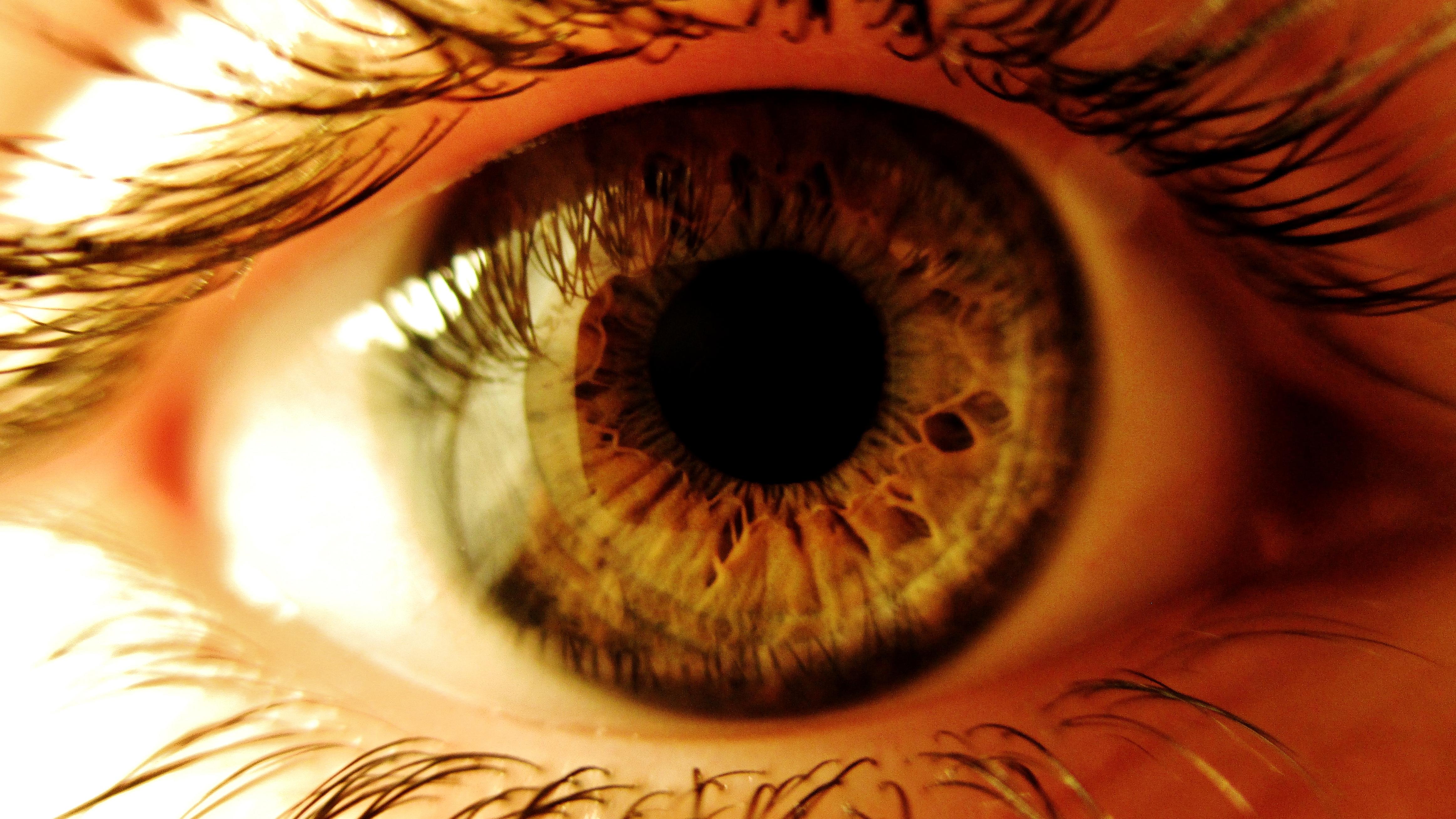 Eye 4k Ultra Hd Wallpaper Background Image 4650x2616 Id 555001 Wallpaper Abyss