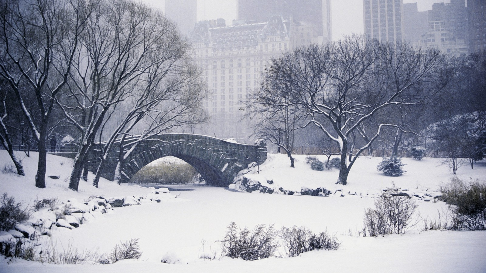 New york wallpaper and background image 1600x900 id - Nyc winter wallpaper hd ...