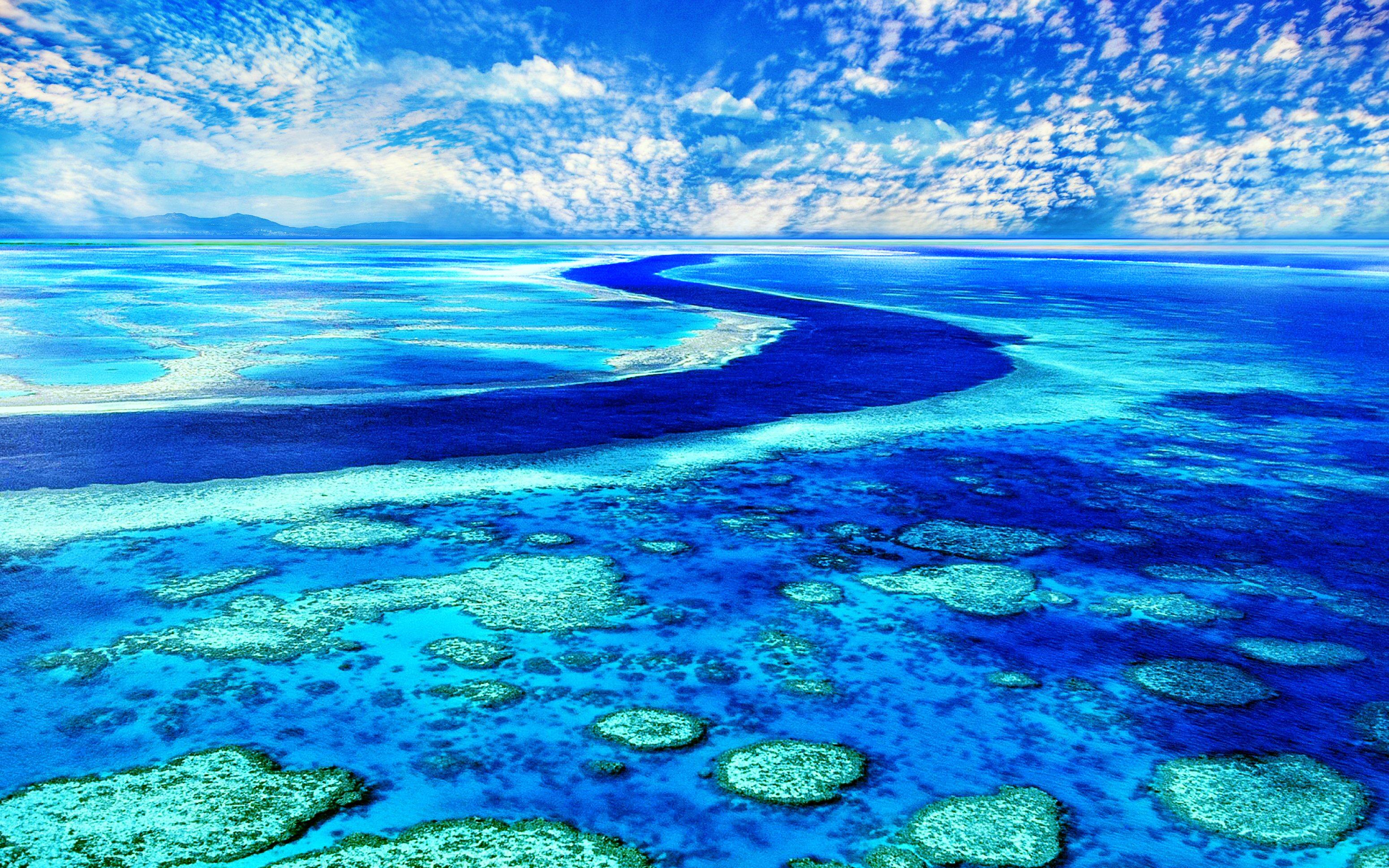 Scenic 51 majestic blue 29march2015sunday versionone - Great barrier reef desktop background ...
