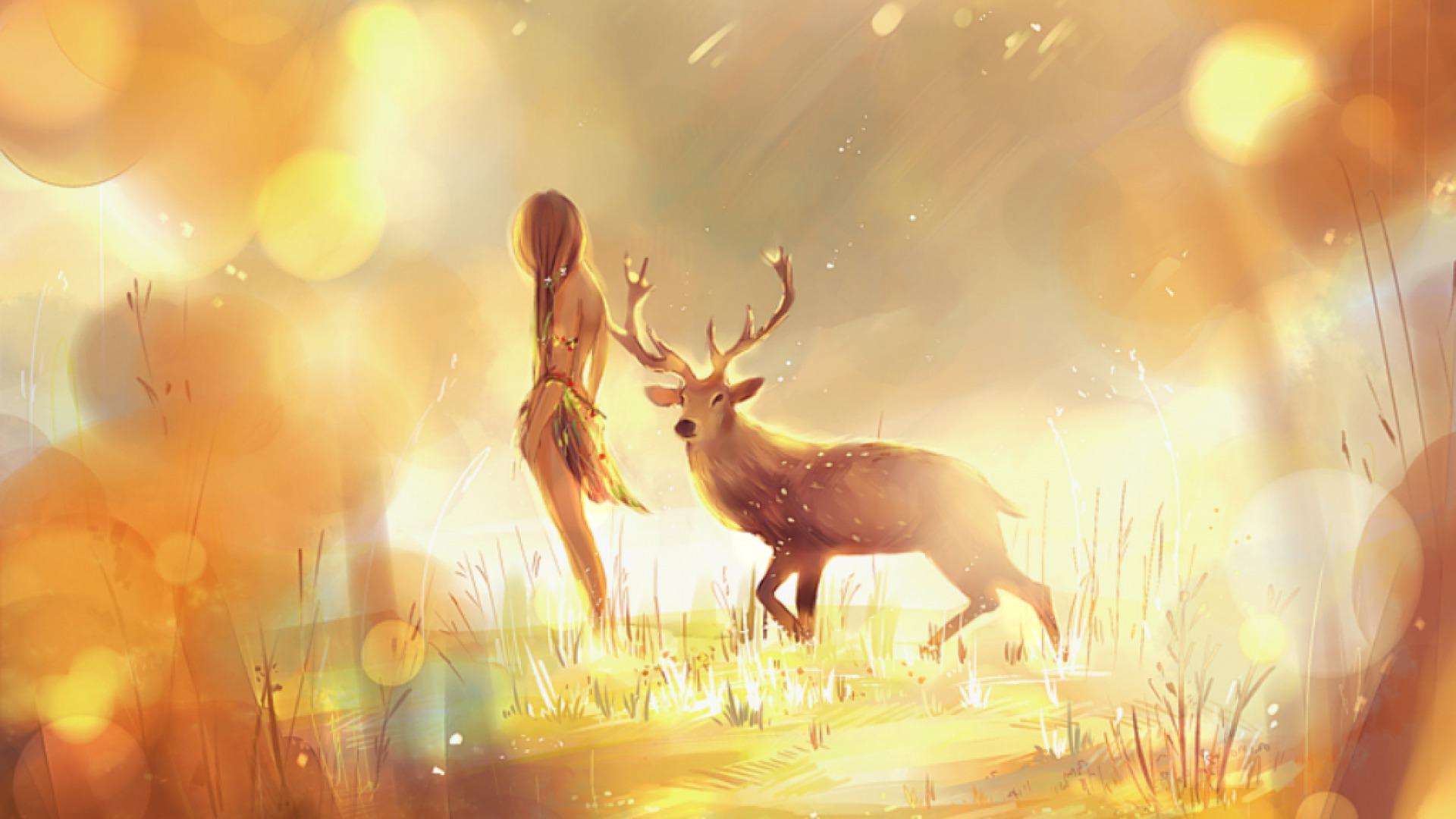 deer hd wallpaper background image 1920x1080 id 592610