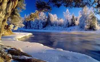 Earth - Winter Wallpapers and Backgrounds ID : 59325