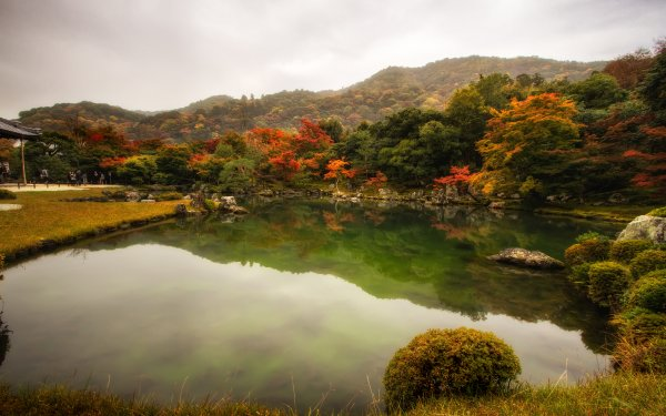 Man Made Garden Pond Tree Fall Japan HD Wallpaper | Background Image