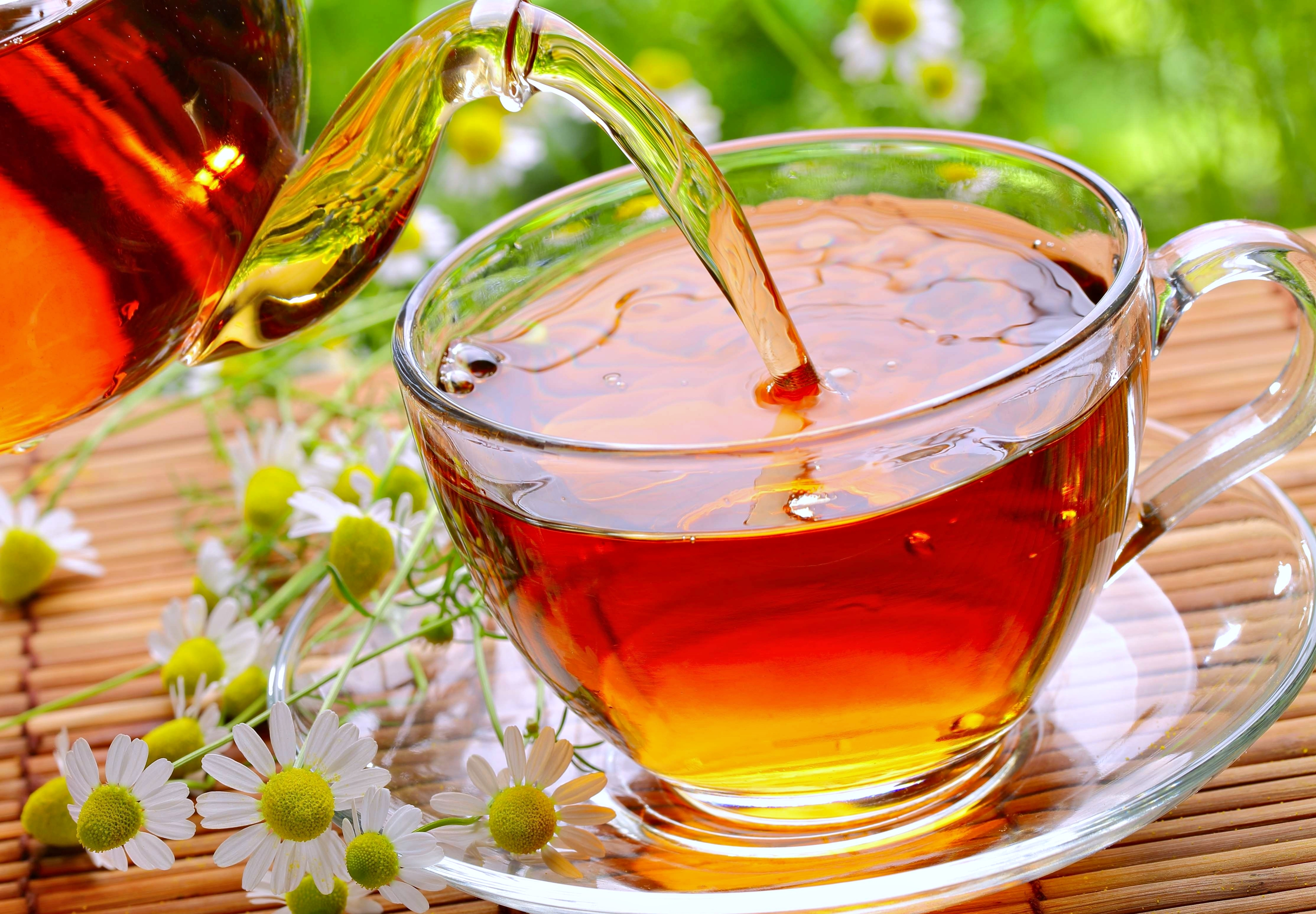 Cup Of Tea 4k Ultra Hd Wallpaper Background Image 3840x2668 Id 595810 Wallpaper Abyss