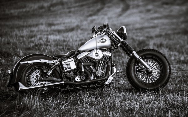 Vehicles Harley-Davidson Motorcycles Motorcycle HD Wallpaper | Background Image