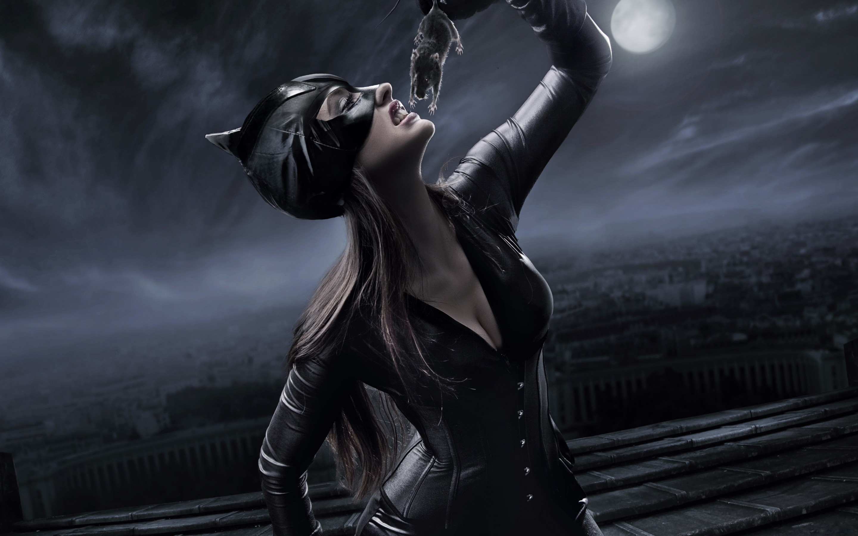 catwoman full hd wallpaper and background image