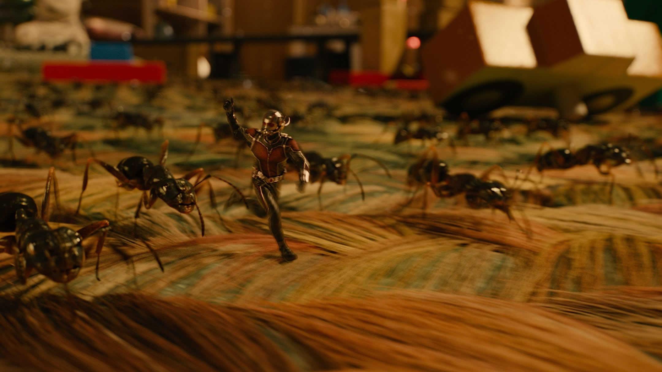 Ant Man Retina Movie Wallpaper: ANTMAN Computer Wallpapers, Desktop Backgrounds