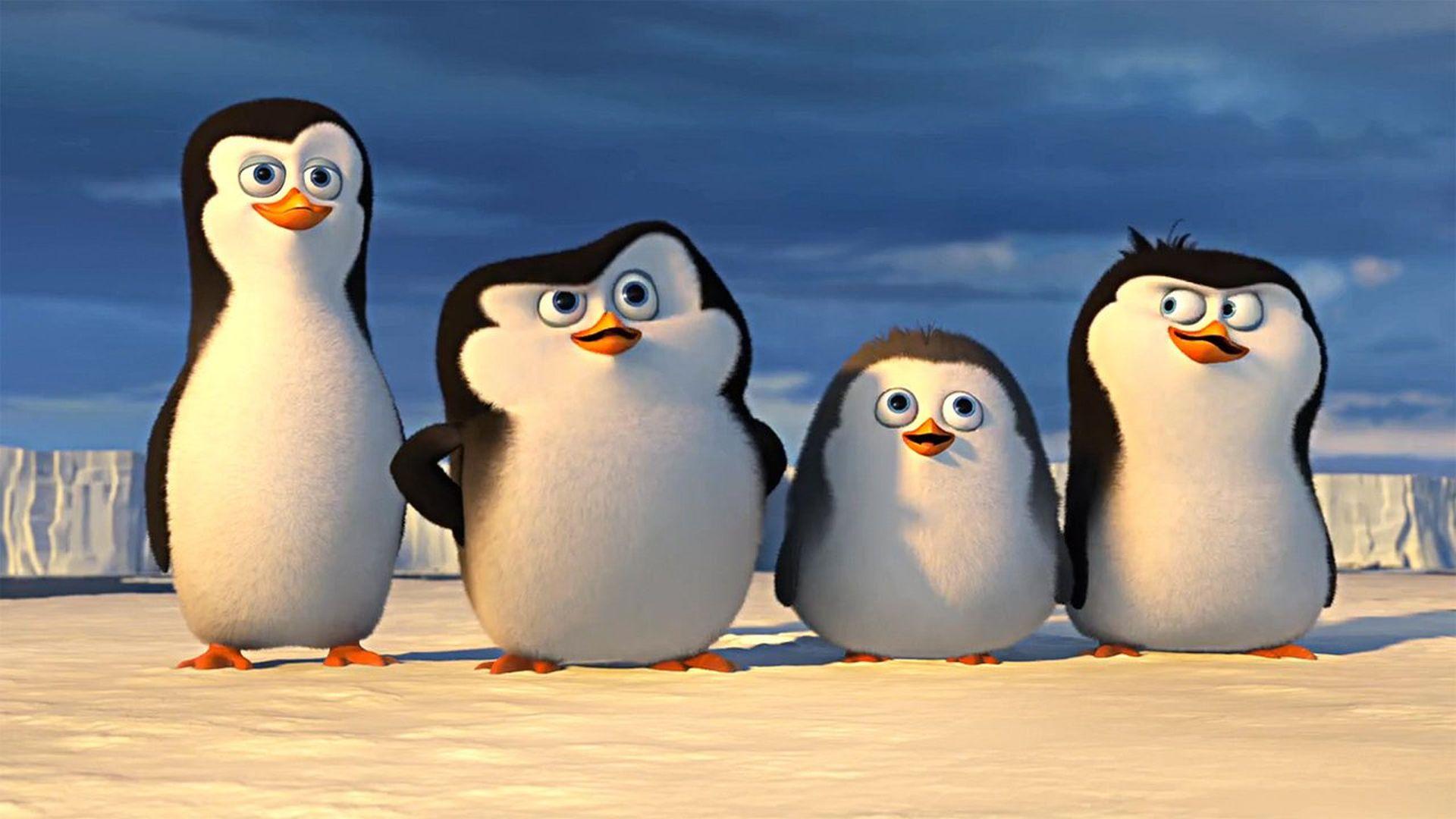 Los ping inos de madagascar full hd fondo de pantalla and - Pinguini di natale immagini ...