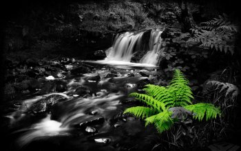 Earth - Stream Wallpapers and Backgrounds ID : 63039