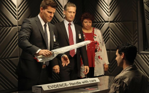 TV Show Bones David Boreanaz Seeley Booth Patricia Belcher Caroline Julian HD Wallpaper | Background Image
