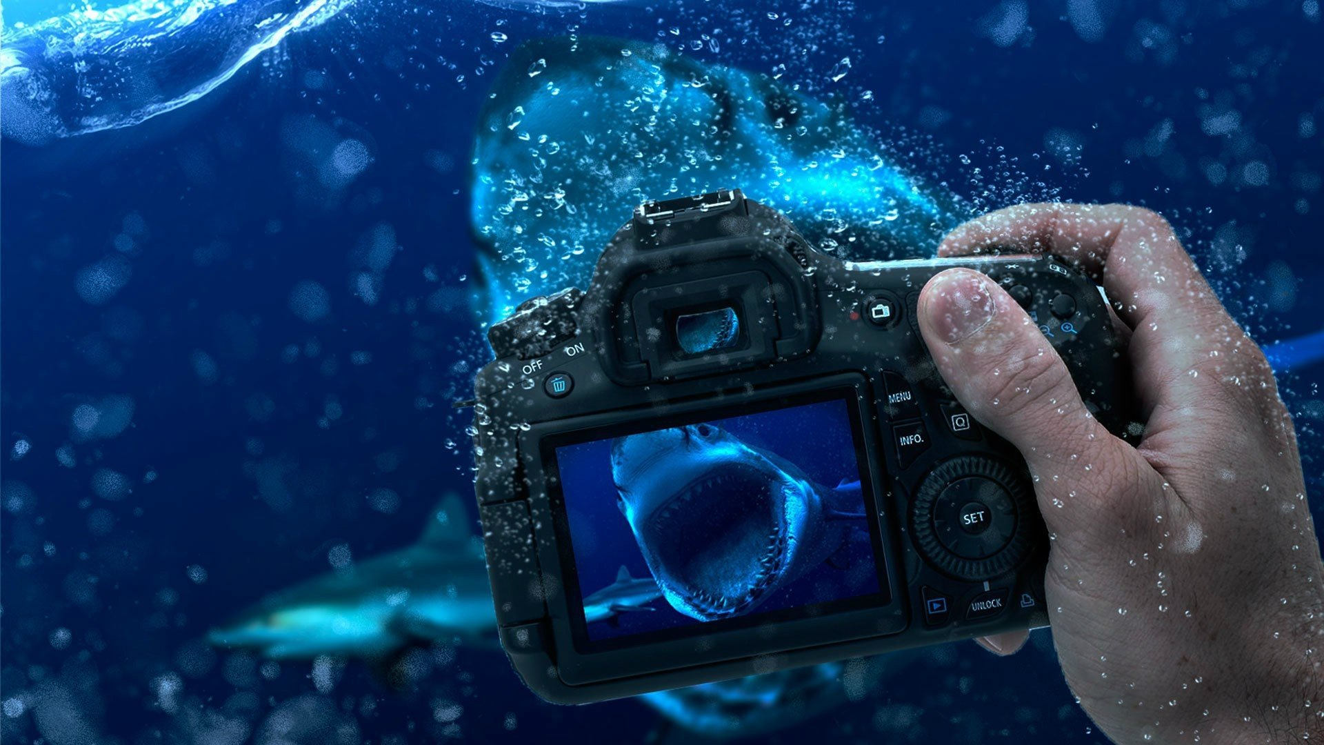 325 Camera Hd Wallpapers Background Images Wallpaper Abyss