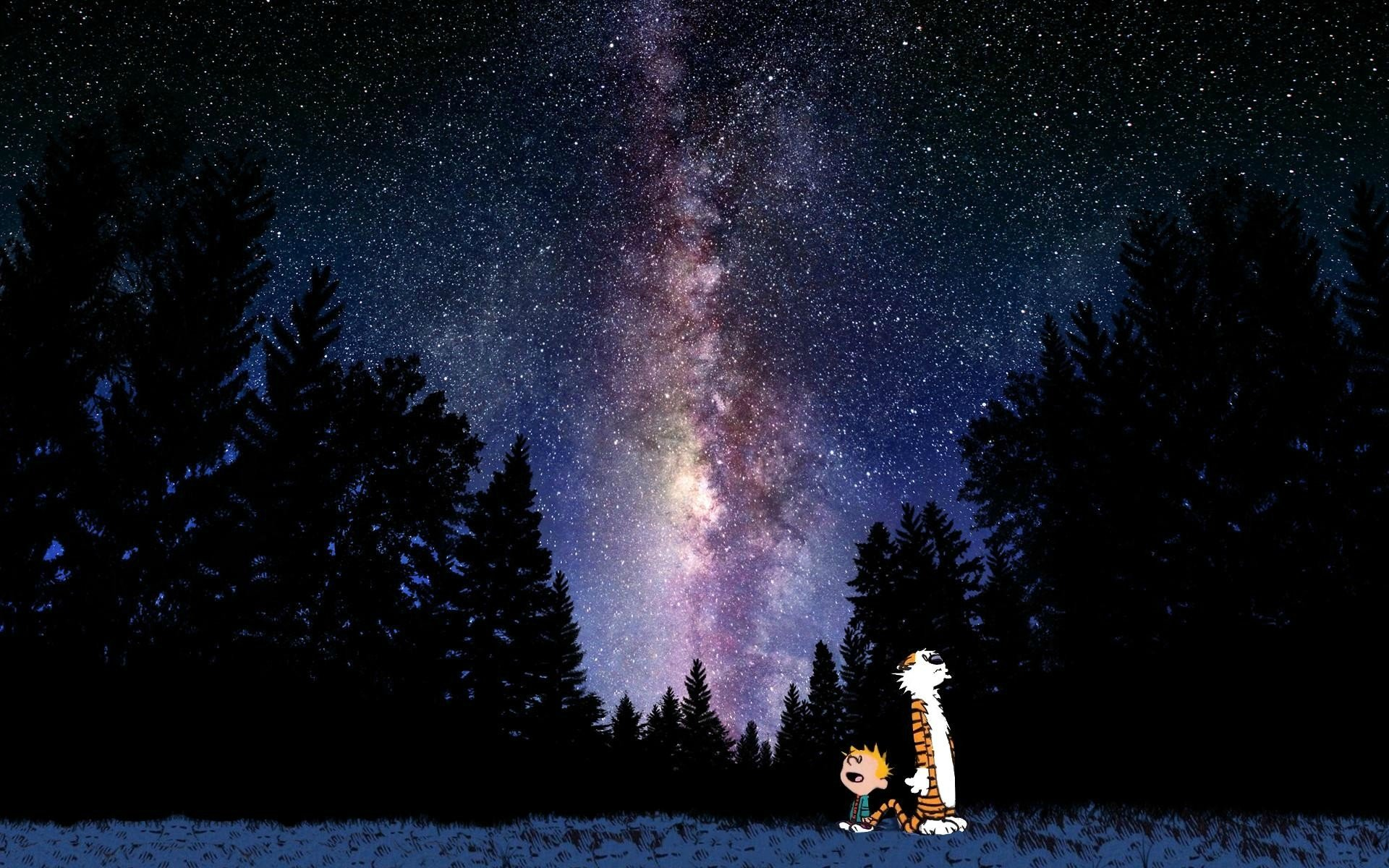 Calvin Hobbes Hd Wallpaper Background Image 1920x1200 Id 659272 Wallpaper Abyss