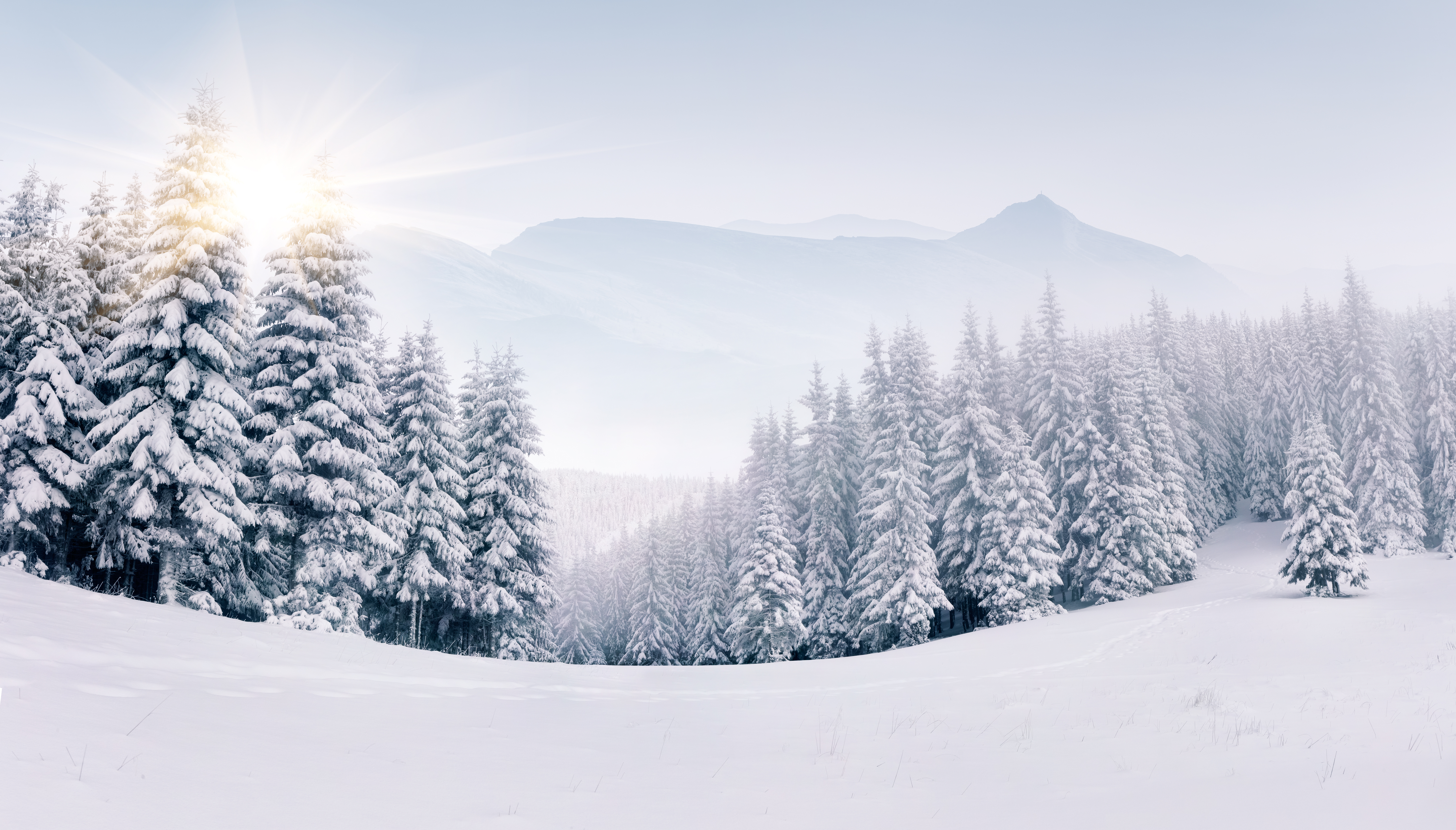 winter 5k retina ultra hd wallpaper and background 6588x3757