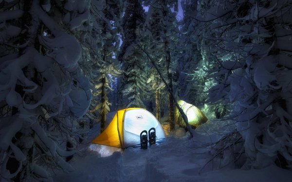 Photography Camping Snow Forest Evening Nature Tent HD Wallpaper | Background Image
